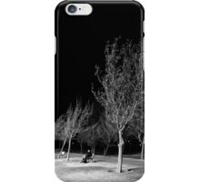 Ridgecrest Park in December iPhone Case/Skin