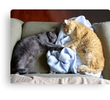 """Holding """"Hands"""" While They Sleep Metal Print"""
