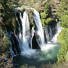 Above Burney Falls - Shasta County, CA by Rebel Kreklow