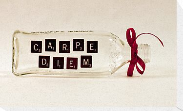 Carpe Diem  by Sandra Foster