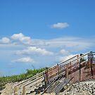 Boardwalk in the Dunes by Lynda Lehmann