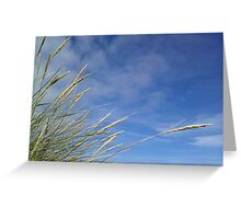 Wild Grasses and Blue Sky - Western Isles, Scotland Greeting Card
