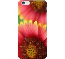 Indian Blanket iPhone Case/Skin