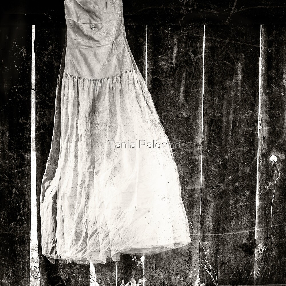 the dress by Tania Palermo