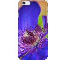 Firework Filaments iPhone Case/Skin