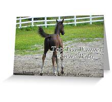 Top Ten - Aww Baby Greeting Card