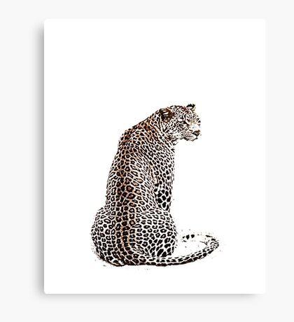 Sitting Leopard Canvas Print