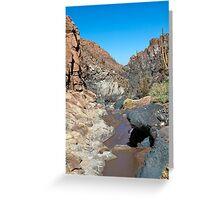 Guatin - Atacama Desert - Chile Greeting Card