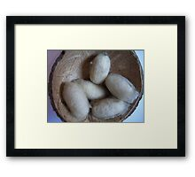 cocoon-successful life Framed Print
