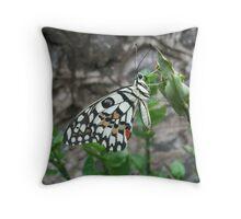 GOD in Heavan all right with the WORLD. Throw Pillow