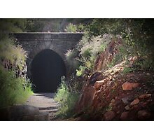 The Swan View Tunnel Photographic Print