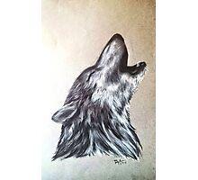 """Western Wolf"" Photographic Print"