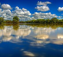 Mirrored..  by Tracie Louise