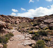 Nacimiento Highlands - Atacama Desert - Chile by parischris