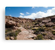 Nacimiento Highlands - Atacama Desert - Chile Canvas Print