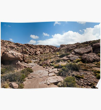 Nacimiento Highlands - Atacama Desert - Chile Poster