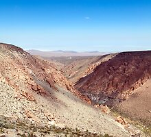 Nacimiento Creek - Atacama Desert - Chile by parischris