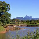 Wollumbin ... by gail woodbury