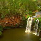 The beauty of Dangar Falls by Michael Matthews