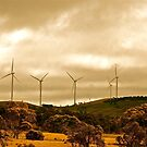 Wind Farm by Michael Evans