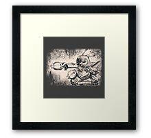 Experiment 626 Framed Print