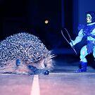 Skeletor & hedgehog by garigots