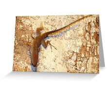 Lizard and matching bark Greeting Card