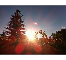 Sun.shine.  Photographic Print