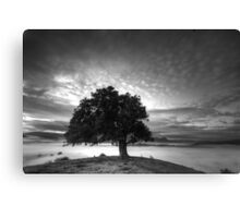 One Tree view and the Acheron valley Canvas Print