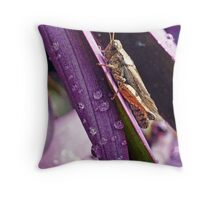 Grasshopper in the Rain Throw Pillow