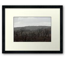 Margaret River Bushfire 2012 Framed Print