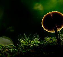 Extraterrestrial by Jocelyn  Parry-Jones