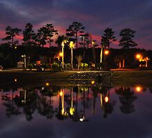 Night Reflection In Myrtle Beach by Kathy Baccari