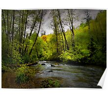 It's What I See ~ Whittaker Creek ~ Poster