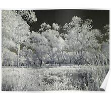 Balyang Sanctuary - IR Magic Poster