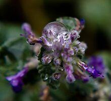Crystal Ball by lookagain