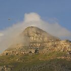 Parasailing Lionshead by Fattom25