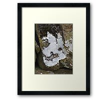 The Lichen of the Baskervilles Framed Print