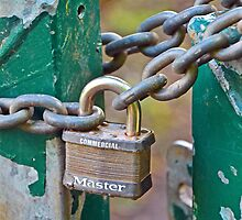 Master Lock by Martina Fagan