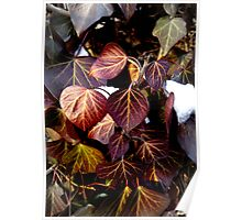 red leaves - portrait format Poster