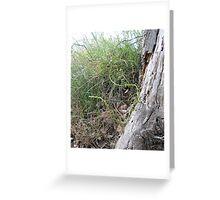 Snaking asparagus Greeting Card