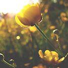 You shine on me by Katarina Kuhar