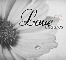 Love Endures by Denise Abé