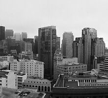 San Francisco Cityscape by Benjamin Curtis