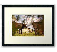 East Devon Rural ...43 Framed Print