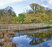 Reflections At Knole by Dave Godden