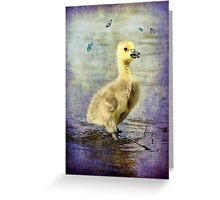 Quiet and calm Greeting Card