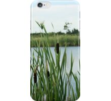 Cattails in the Wind iPhone Case/Skin