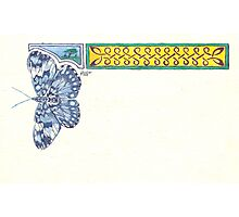 Blue Butterfly & Knotwork Border Pen & Ink Drawing Photographic Print
