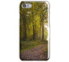 Path #44547 iPhone Case/Skin